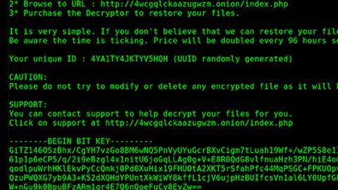 PyLocky Ransomware thumbPyLocky Ransomware thumb
