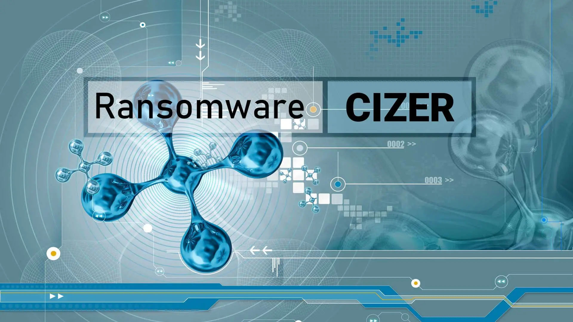 Cizer Ransomware