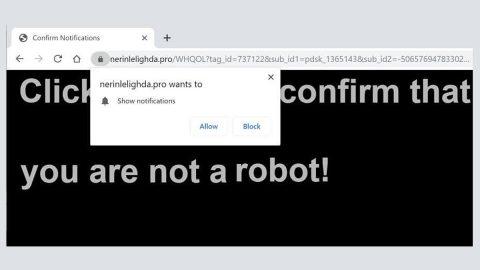 Nerinlelighda.pro Ads hijacker thumb
