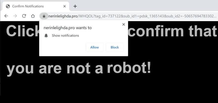 Nerinlelighda.pro Ads hijacker